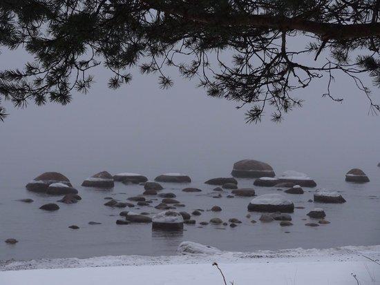 Glebychevo, Russland: Вид на Финский залив от памятника. Философское место.