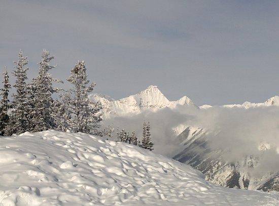 Фотография Panorama