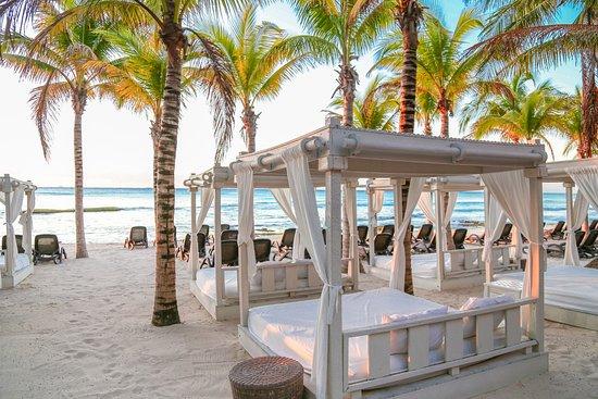 Sandos Caracol Eco Resort MexicoRiviera Maya Playa del Carmen
