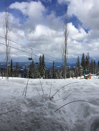 Snowbird Lodge: photo0.jpg