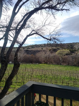 Cornville, AZ : Page Spring Cellars Winery & Vineyards
