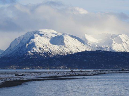 The Alaska Beach House: Homer Spit, Kachemak Bay, Kenai Mountain Range, Kachemak Bay State Park.