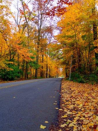Richmond, IN: Fall in Glen Miller Park