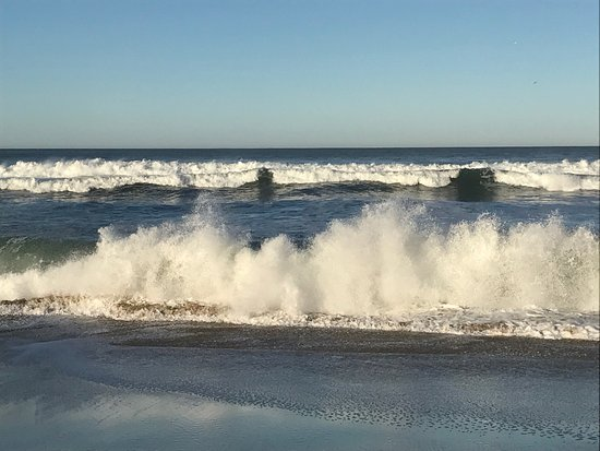 San Gregorio, CA: photo1.jpg