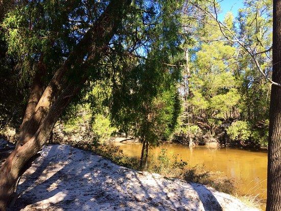 Robertsdale, AL: photo2.jpg