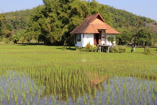 Mae Chan, Thailand: One of the bungalows