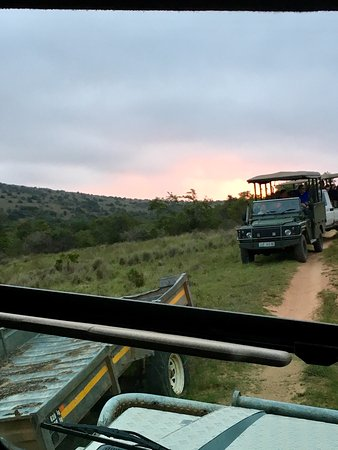 Schotia Safaris Private Game Reserve: photo0.jpg