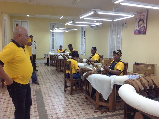 El Laguito Cigar Factory : Selection of the leafs of leafs (capa)
