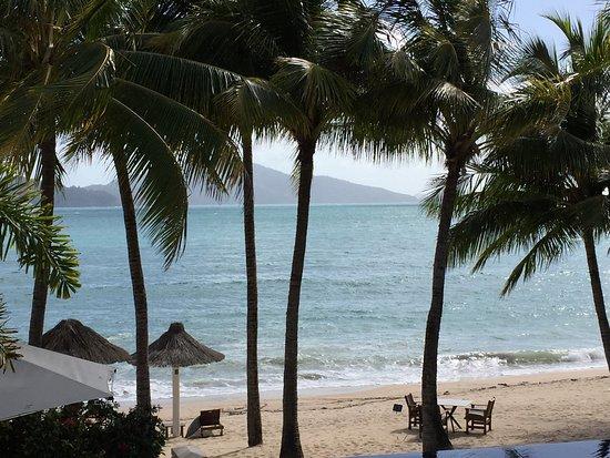Beach Club: photo4.jpg