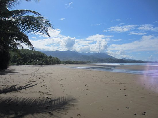 Province of Puntarenas, Costa Rica: Looking to the south from the beach by the whale tail