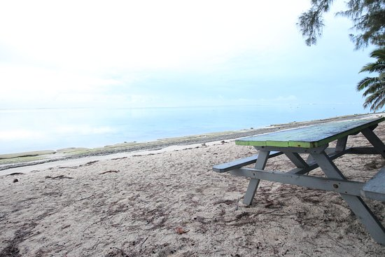 Picnic Table At Beach Across From Fruits Of Rarotonga Very Nice Scenery