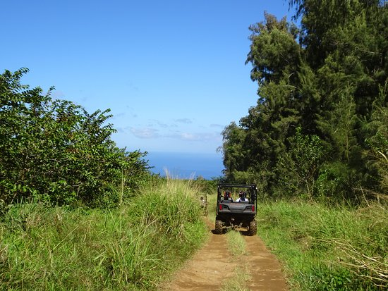 ATV Outfitters Hawaii: Keepin' 8 lengths back