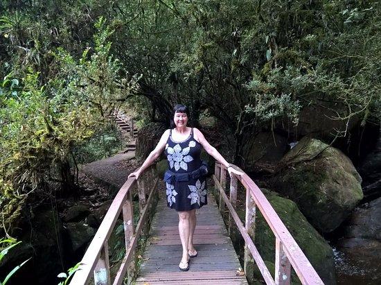 Itatiaia, RJ: Passarela no caminho da Véu da Noiva.