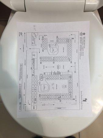 بست ويسترن بلس بيبرز تري إن: The toilet was built for pre-teens and rented to adults at full price....