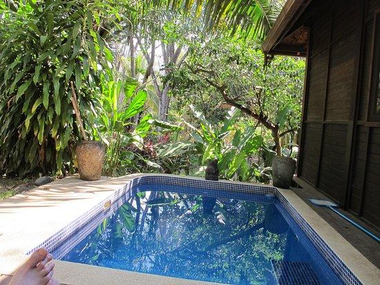 Bali Rica Casitas: Private dipping pool