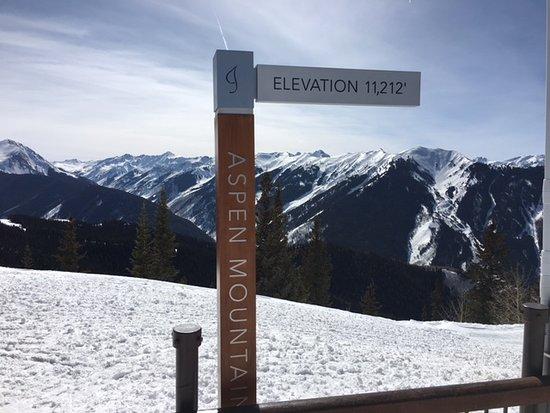Silver Queen Gondola: 11,212 ft in elevation