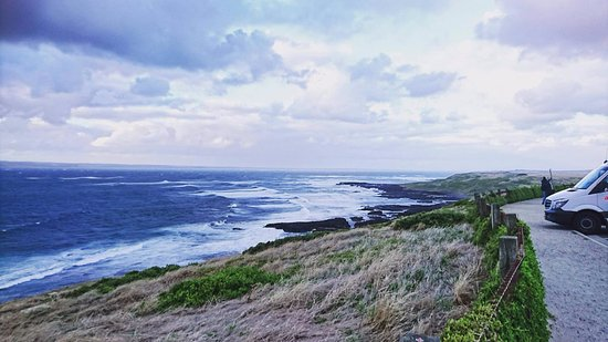 Phillip Island, Australië: The Nobbies