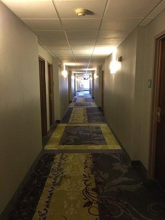 Carpenter Street Hotel: photo0.jpg