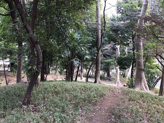 Takanawa Mori no Park