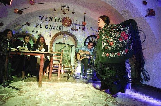 Espectáculo de flamenco en el...