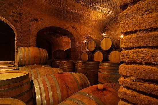 Priorat Experience: Wine, Oil and...