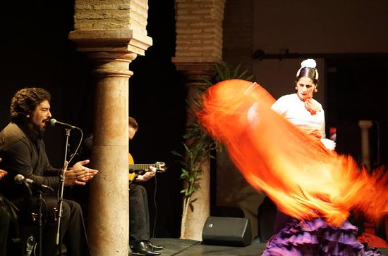 Evening Tapas and Flamenco Tour in ...