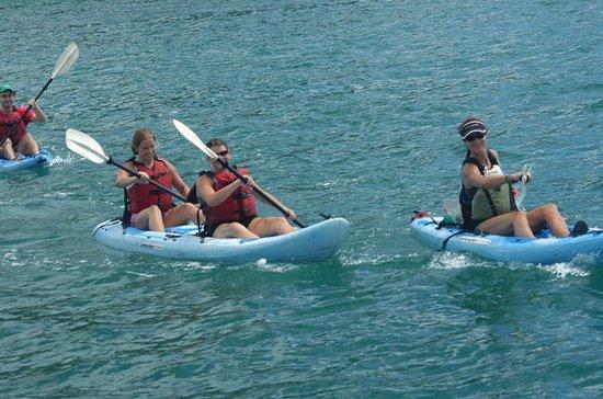 Visite en petit groupe: Ocean Kayak...