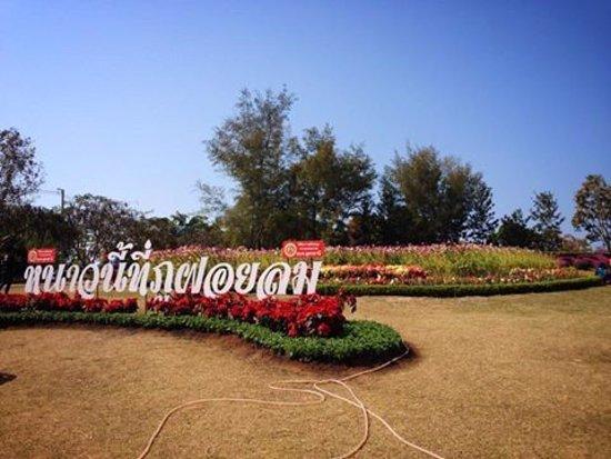Provincia de Udon Thani, Tailandia: ฝอยลม