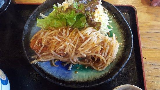 Toyoyama-cho-bild