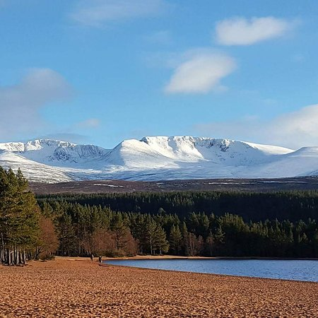 Aviemore, UK: FB_IMG_1488878636084_large.jpg