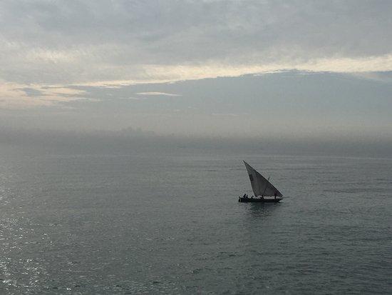 Sea Cliff Hotel: photo3.jpg