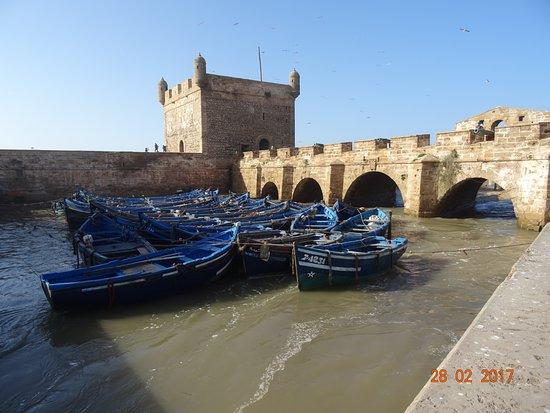 Les Terrasses d'Essaouira: De haven van Essaouira.