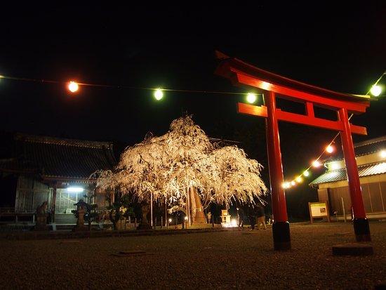 Noyorihachimansha
