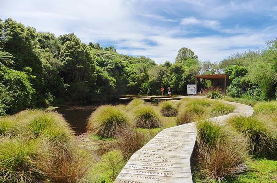 Whanganui, New Zealand: Part of garden walk - boardwalk around a small lake.