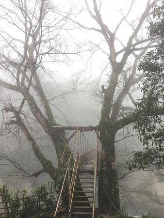 Cau May Homestay: Nhà Nghỉ Cầu Mây