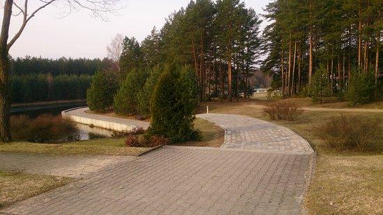 Foto de Boroviki