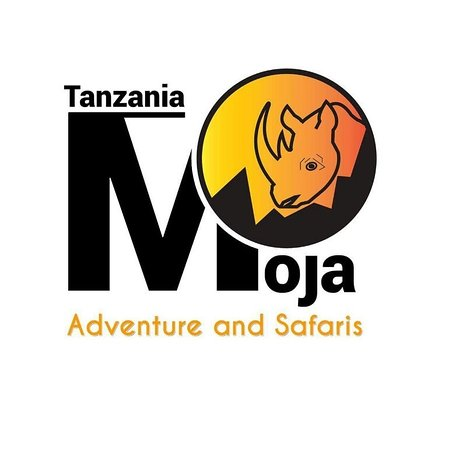 Moja Adventure and Safaris