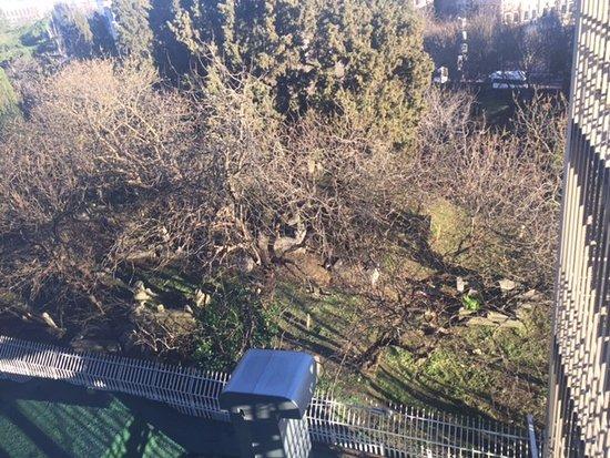 Hilton ParkSA Istanbul: Mezarlık manzarası