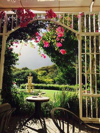 Vineyard Hotel: photo0.jpg