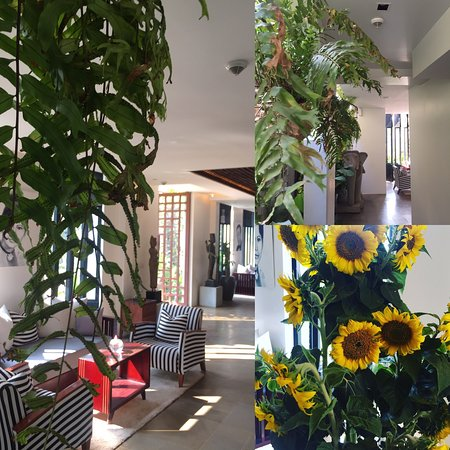 Jaya House River Park: Jaya House RiverPark hotel Siem Reap ! 36 rooms/suites, aiming to be plastic free, let's inspire