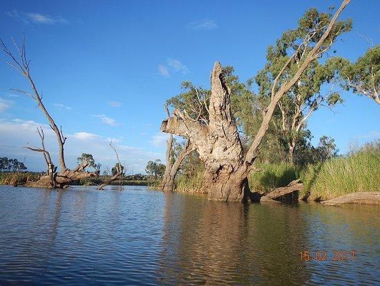 Canoe the Riverland: A very peaceful and quiet place.