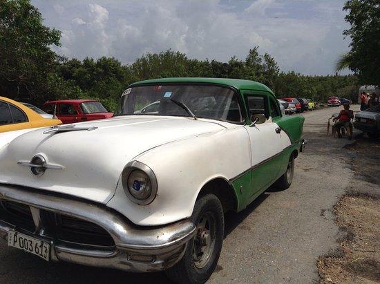 Casa Particular Ridel y Claribel: viajar en un taxi de los sesenta !! experiencia increible!!
