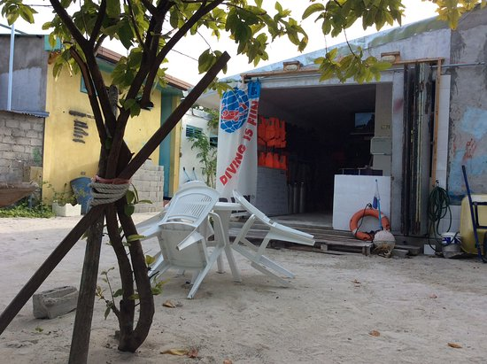 Adventure Diving: Gulhi diving school is on the Bikini beach and the staff are around the beach