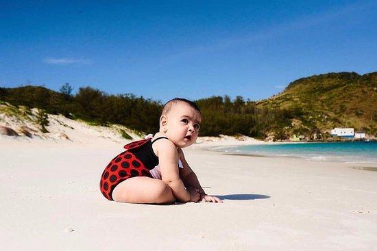 Arraial Vip Turismo: Ilha do Farol