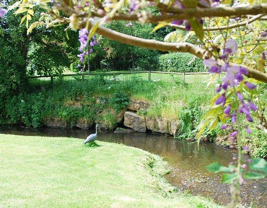 Webbs of Wychbold: The River Salwarpe flows through Webbs Riverside Gardens