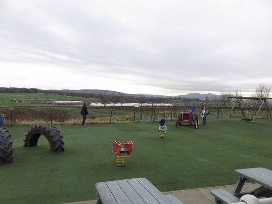 Craigie's Farm Deli and Cafe: outside childrens play area