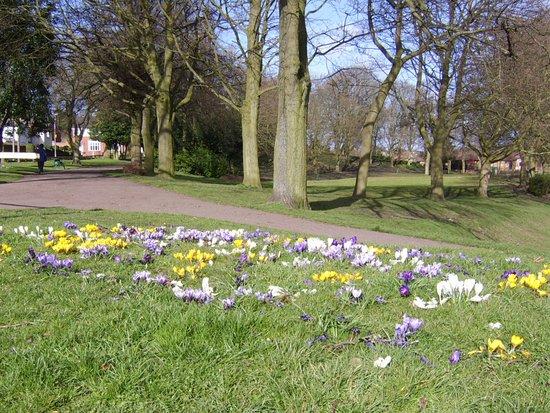Netherton Park