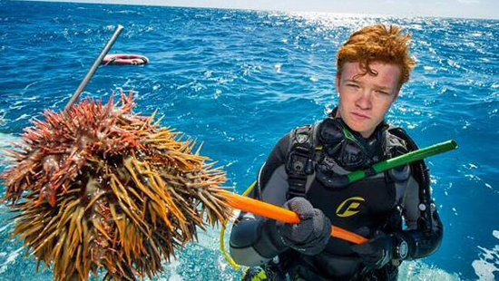 Adventure Diving: Removing Crown-of-thorns from the reef is technical too