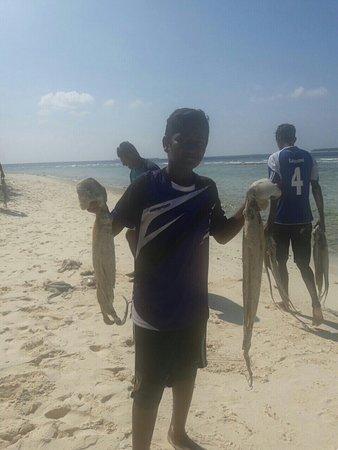 Adventure Diving: Island boys caught octopus