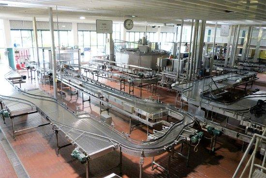 Jever, Germania: Teilbereich der Abfüllanlage (Flascheninspektion)